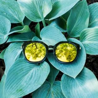 Okulary przeciwsłoneczne Phoebe
